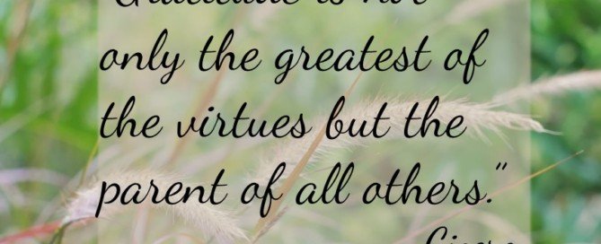 """Gratitude is not only the greatest of the virtues but the parent of all others."" – Cicero"