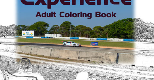 The Sebring Experience Adult Coloring Book by Jerry D Clement with Jacquelyn Lynn