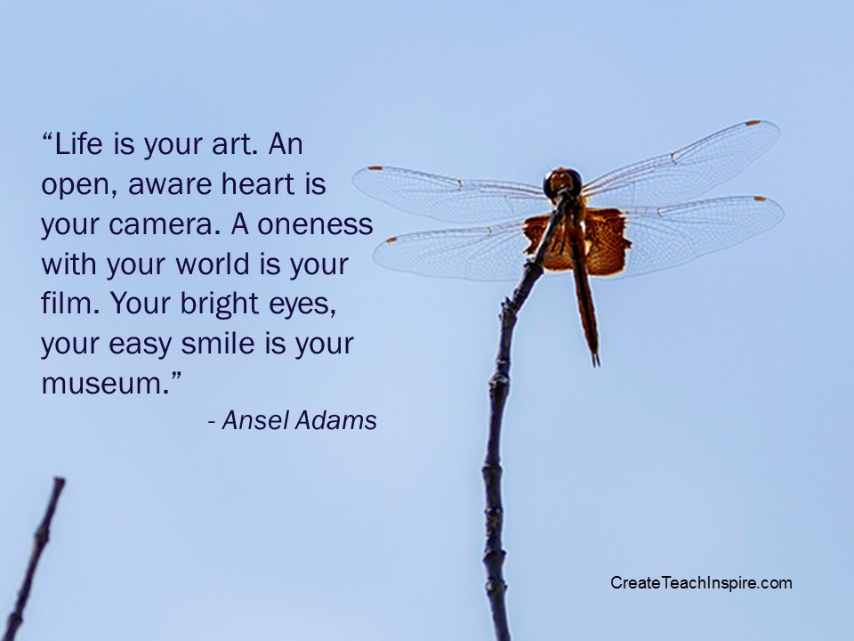 """""""Life is your art. An open, aware heart is your camera. A oneness with your world is your film. Your bright eyes, your easy smile is your museum."""" - Ansel Adams"""